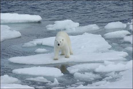 Smeltende ijskap